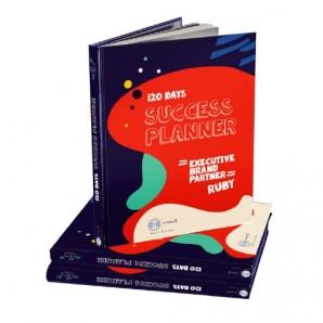Plan de Éxito de 120 días (Planner)